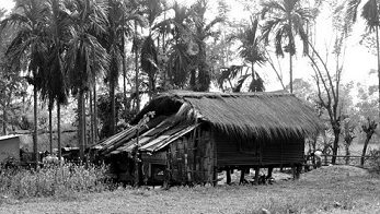Toto hut where Toto tribe live in Totopara